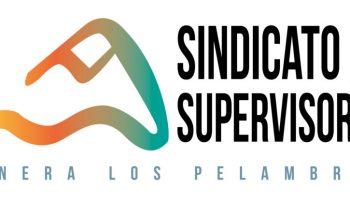 Sindicato de Supervisores Minera Los Pelambres, acusa despidos injustificados y arbitrarios