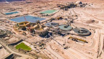 AMSA cumple metas de producción en 2021 y estima una disminución para el 2022